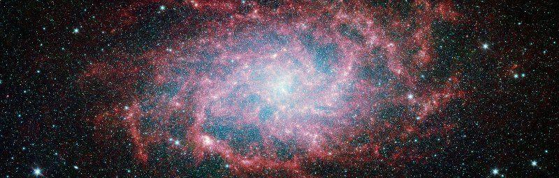 El sentido de la vida según el astrofísico y divulgador Neil DeGrasse